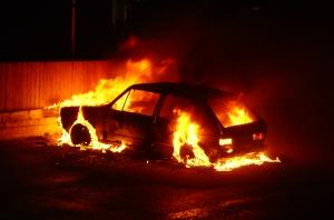 Bilbrandsimporten allt mer framgångsrik