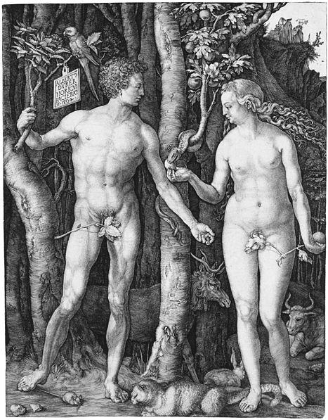 467px-Adam_Eva,_Durer,_1504